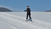 Cross country skiing, nordic skiing